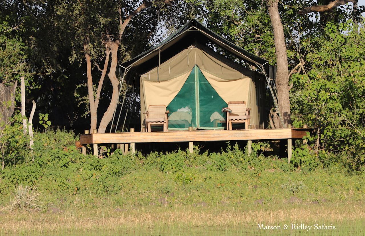 Macatoo tent