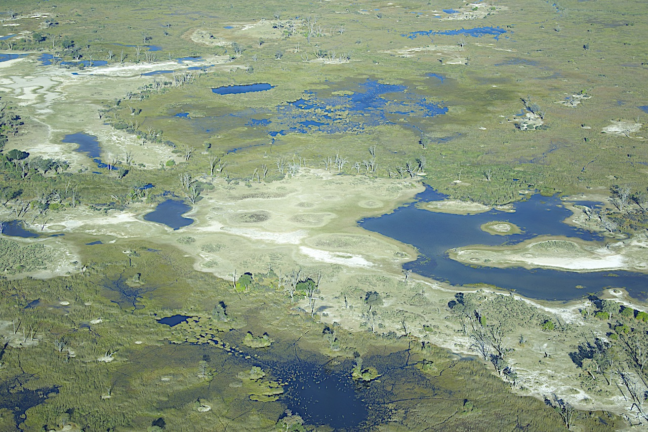 Okavango aerial reduced