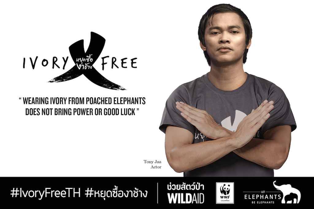 IVORY AD TONY ENG reduced for web